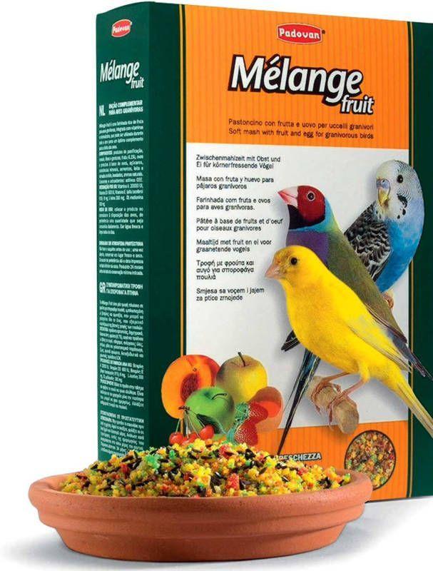 Как сделать корм для птиц в виде шариков