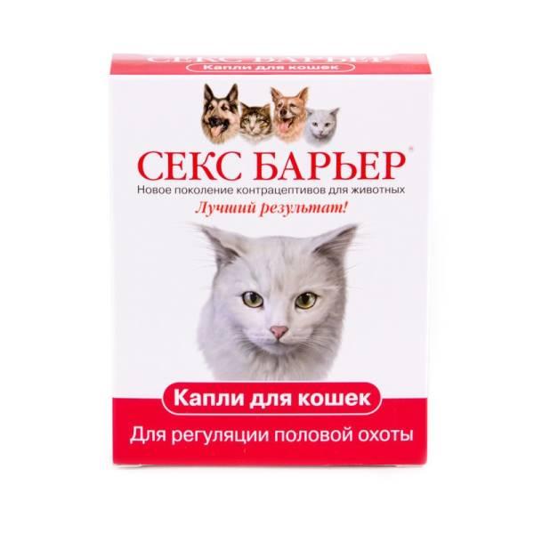 Для кошек контрасекс